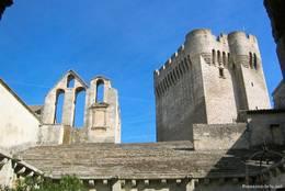 Blick auf den Wachturm der Abbaye de Montmajour (Tour de l'Abbé, 1369)