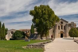 Blick aus dem umliegenden Garten auf die Abbaye de Silvacane