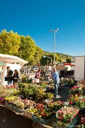 Ein Stand mit Blumen auf dem Wochenmarkt in Apt
