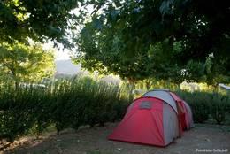 Ein Zelt am Morgen auf einem Campingplatz in der Provence