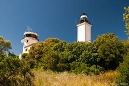 Phare de Camarat, der weiße Leuchtturm am Cap Camarat
