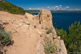 Teil des Weges zum Cap Camarat, gesäumt von blühenden Pflanzen und mit fantastischer Aussicht