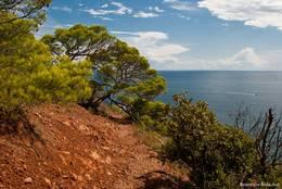 Der schmale Trampelpfad der teilweise das Cap Dramont umrundet erfordert teils Schwindelfreiheit