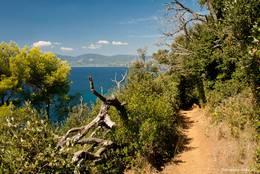 Der Küstenwanderweg zum Cap Lardier nach einem etwas längeren Anstieg