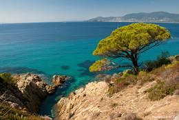 Traumhaft schöne Côte d'Azur - Ausblick vom Küstenwanderweg zum Cap Lardier in Richtung der Hyèrischen Inseln