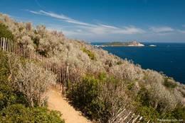 Vom Cap Lardier führt der Wanderweg weiter zum Cap Taillat