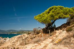 Der Küstenwanderweg zum Cap Lardier ist sehr abwechslungsreich