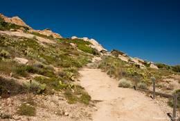 Weg nahe dem Cap Taillat, links und rechts wachsen teils Kaktusfeigen