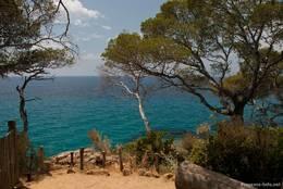 Wunderschöne Ausblicke auf das Mittelmeer bietet der Rundweg durch die Domaine du Rayol