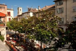 In den Straßen von Fayence kann man unter blühenden Magnolienbäumen speisen