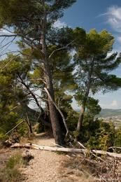 Weg oben auf der Felsformation Les Pénitents