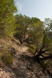 Der Wanderweg auf die Felsformation Les Pénitents ist meistens nicht gerade breit