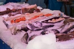 Verkauf von frischem Fisch in der Markthalle