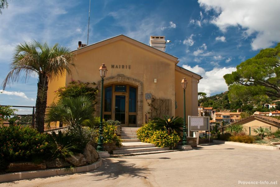 Bormes les mimosas provence - Office du tourisme bormes les mimosas ...